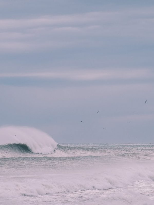 Lonely Wave